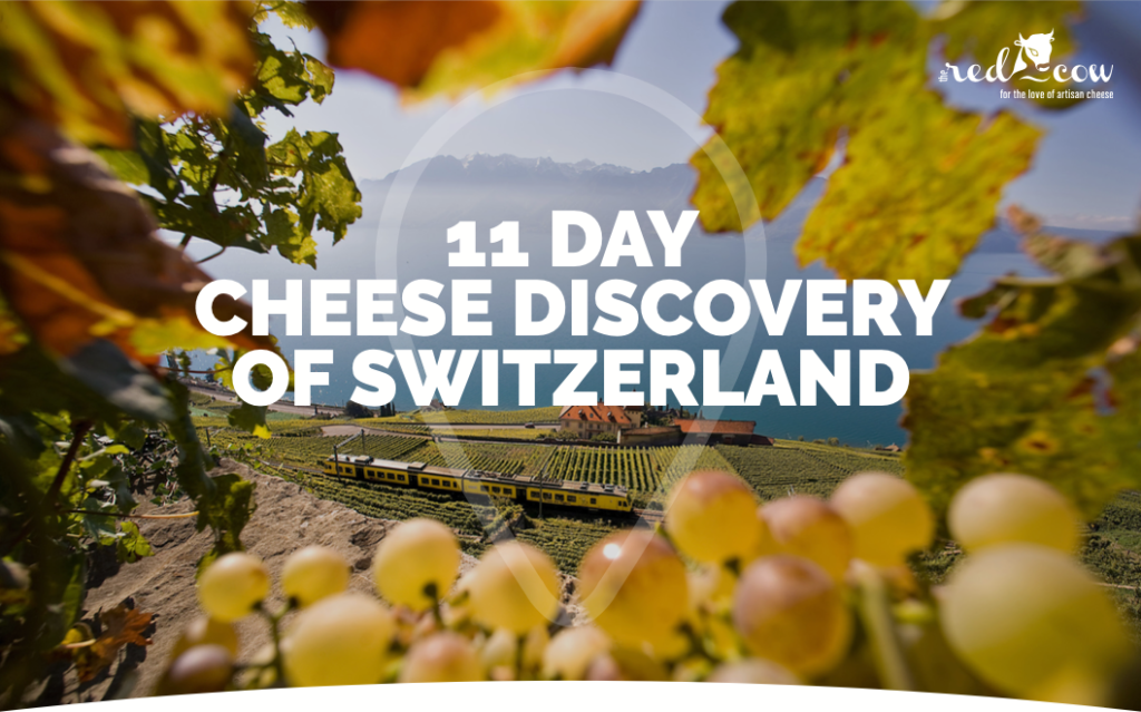 11 Day Cheese Discovery of Switzerland